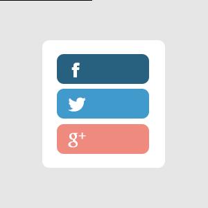 Social Media : €50